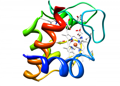 1280px-Cytochromec