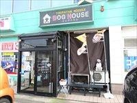 ドッグハウスでいただく絶品二郎系ラーメン「犬二郎」