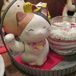 [閉店]【猫好き必見】富山で味わう東北の郷土料理@居酒屋 音鼓一【猫好きでなくても必見】