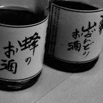 小谷村の特産品『山ぶどうのお酒』と『蜂のお酒』を飲み会に持っていった結果