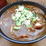 【カレーうどん吉宗】高岡に寄ったら食べてかれま!富山カレーうどん界の頂点がここに