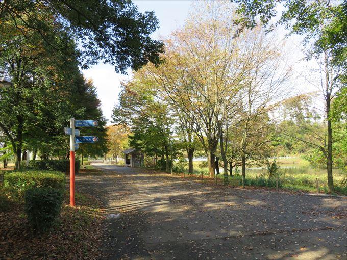 富山市ファミリーパークの園内風景