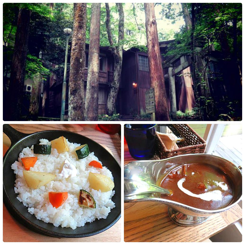 【東山ボヌール】まるで森の中にあるような隠れ家カフェが大人気!
