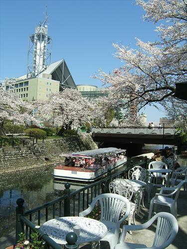 富山市役所展望塔