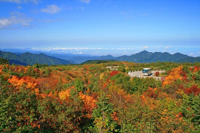 秋の高原バス