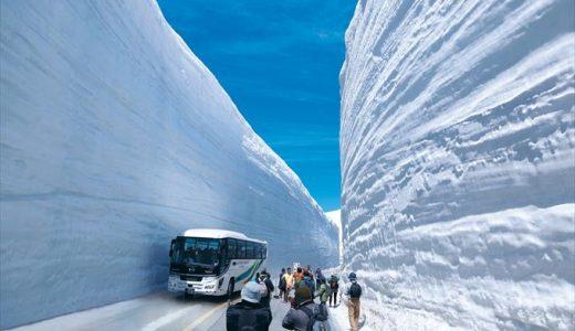 【雪の大谷2018】そこは別世界だった!ぜひ知っておきたい利用法まとめ