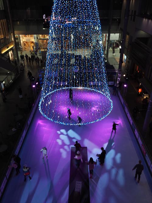 クリスマスイルミネーションとエコリンク