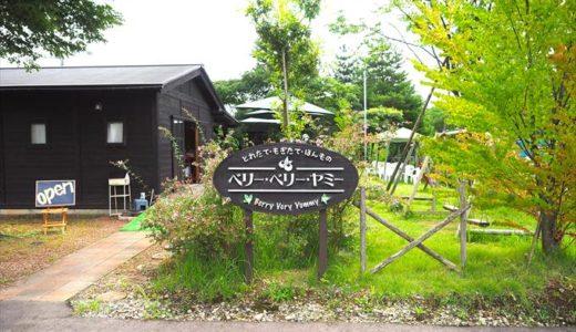 【ベリー・ベリー・ヤミー】富山でブルーベリー狩りと自家製スイーツを楽しもう!
